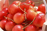 广州水果航空货运,水果空运,白云机场水果空运,广州水果空运价格