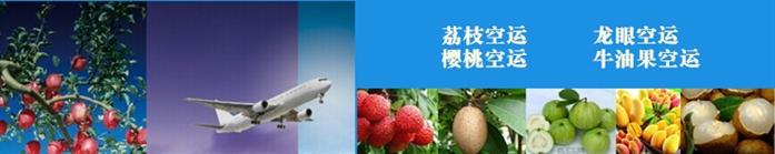 水果航空货运,荔枝空运,龙眼空运,牛油果空运,樱桃空运