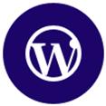 富民网站开发